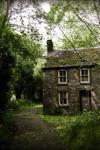 i would like to imagine a charming history of this little moldering home in the forest