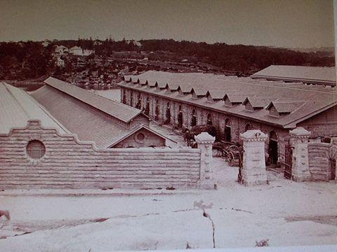 Glebe Island Abattoirs, 1870 Charles Pickering, National Library of Australia