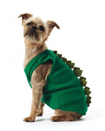 """Doggie Dino Tank Or should we say """"Jurassic Bark?"""" Your pooch will love roaming the earth in this easy-to-make Halloween costume. How to Make a Doggie Dino Tank"""