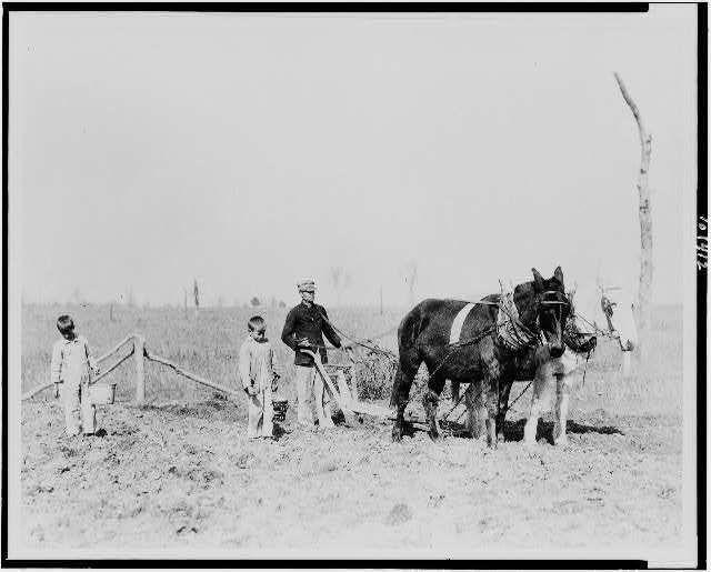 605 best USA - Arkansas 4 Vintage Photos images on ...