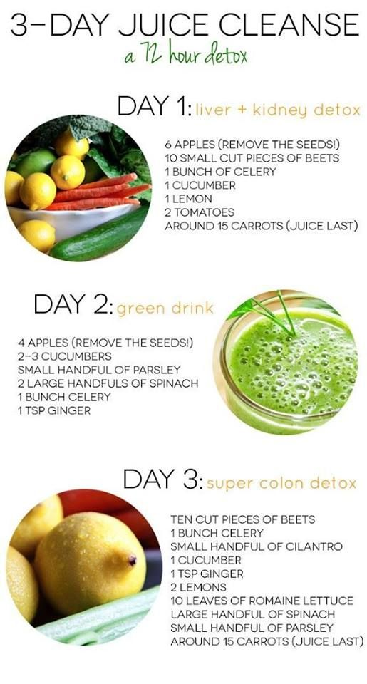 3 Day Juice Detox Who's ready to rock it out and start the detox program? These recipes can help you as you go along with the detox!