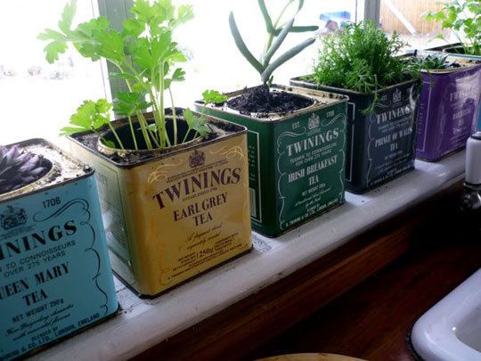 Reused tea tins used as plantersKitchens Windows, Teas Tins, Indoor Herbs, Cute Ideas, Vintage Teas, Plants, Herbs Gardens, Planters, Old Tins