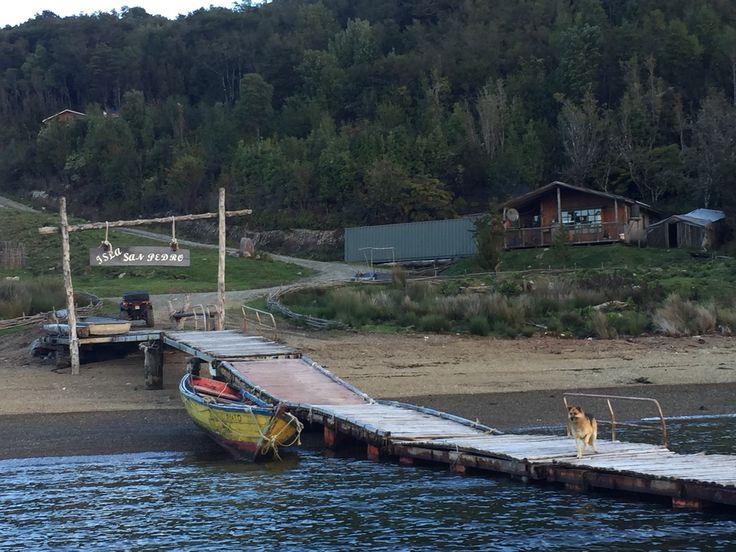 Isla Sand Pedro home of Sirena de Chiloe vodka.  Sirena de Chiloe Chilean vodka. Chile, Santiago, Quellon, papas, mermaid, Chilean, potato http://sirenadechiloe.cl/