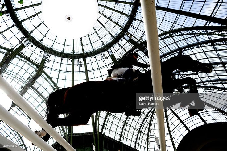 Scott Brash of Great Britain on Hello Annie in action to finish fourth during the Prix GL Events during the second day of the Grand Prix Hermes of Paris at Grand Palais on March 15, 2014 in Paris, France.