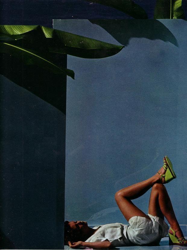 Blue Wall, Green Palm - Guy Bourdin