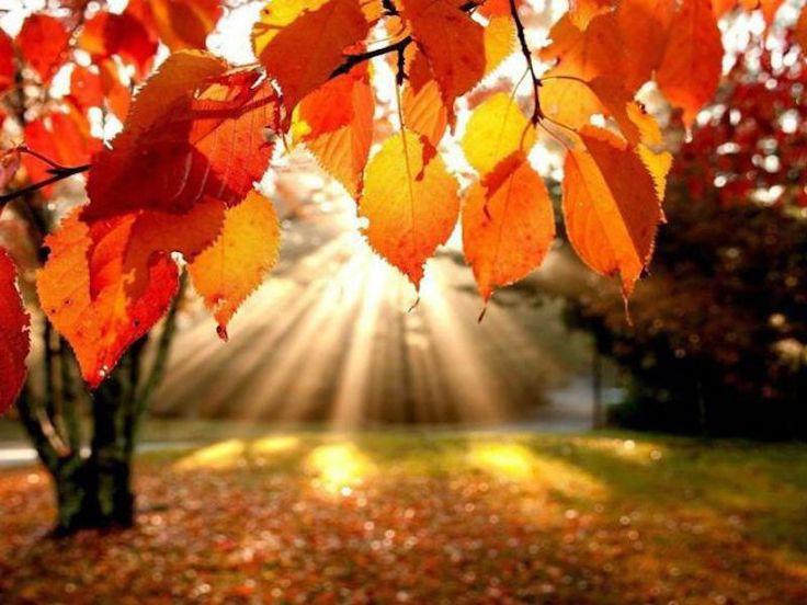 Equinoccio de otoño 22 de septiembre  2016