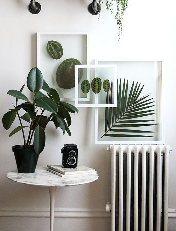 DIY: Pressed Plant Frame