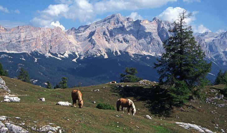 Bambini in Montagna in Alta Badia - Val Badia
