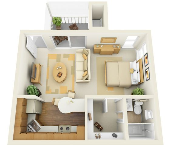 small space layout. With a nice big closet. I'd reverse the closet and the bathroom, and add a partition to give some privacy to the sleeping area.