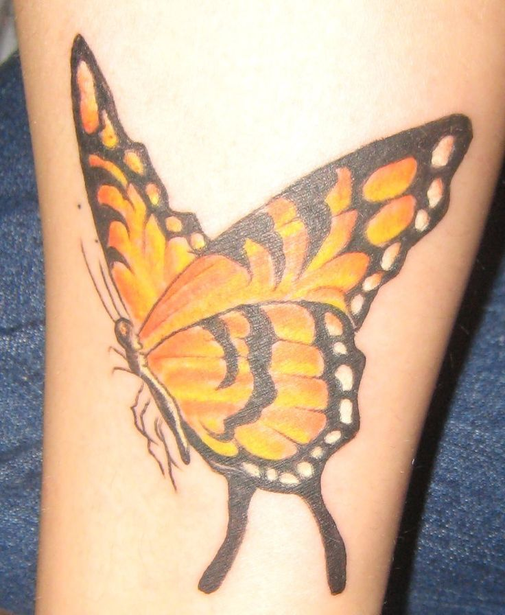 3d Monarch Butterfly Tattoos Hot Girls Wallpaper