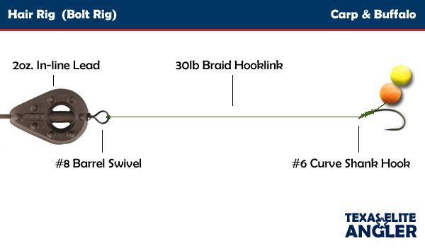 Hair rig the basic configuration for carp fishing carp for Basic fishing rigs