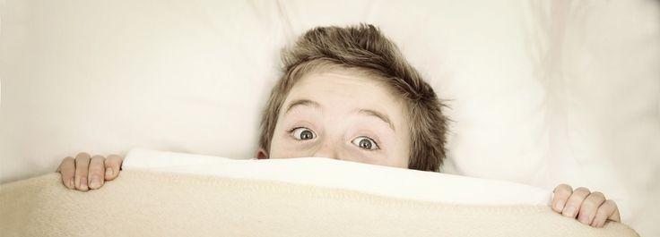 Pesadillas y terrores nocturnos, parasomnias causas, despertar en fase REM y tratamiento. Alteraciones: somniloquio, mioclonias hípnicas, sonambulismo