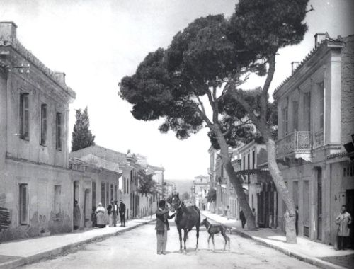 Οδός Βερανζέρου. Με άλογο και πουλαράκι, στη μέση του δρόμου. Με σπίτια και δέντρα που χάθηκαν από προσώπου πόλης (περίπου 1910)