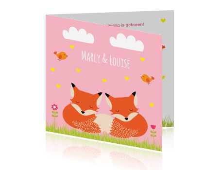 Lief geboortekaartje voor een tweeling met vosjes, hartjes en wolkjes.