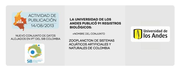 Actividad de publicación 14/08/2013