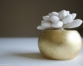White Modern Succulent Sculpture with Round Gold Container, Tabletop Centerpiece, Desktop Accessory