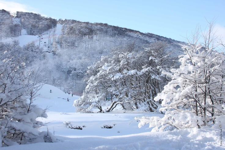 Cerro Castor, el centro de esquí más austral del mundo