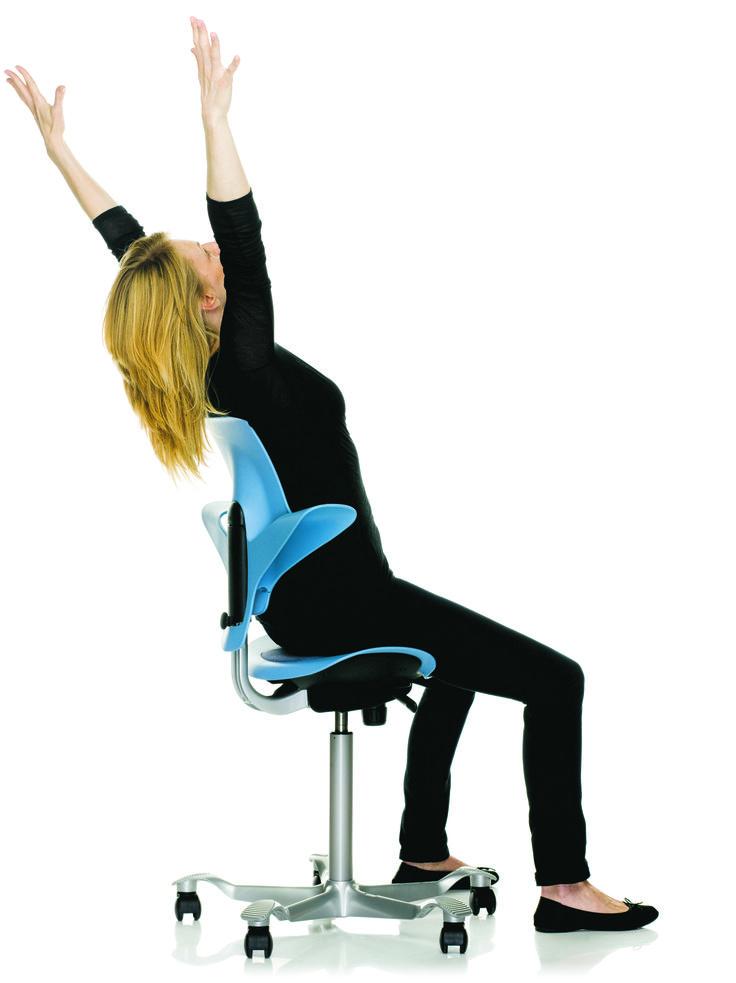 Gesund Sitzen Auf Dem Hag Capisco Puls Saddle Chair Reception Furniture Chair Design