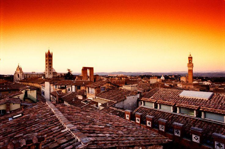 Roof of Siena
