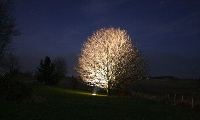New Ljuss ttning Garden lightning tr dg rdsbelysning Pinterest Lightning