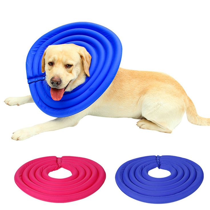 Pet Dog Cat Protective Recovery E-Collar puppy kitty recovery collar neck accessory supply 2017 S/M/L/XL/XXL #Affiliate