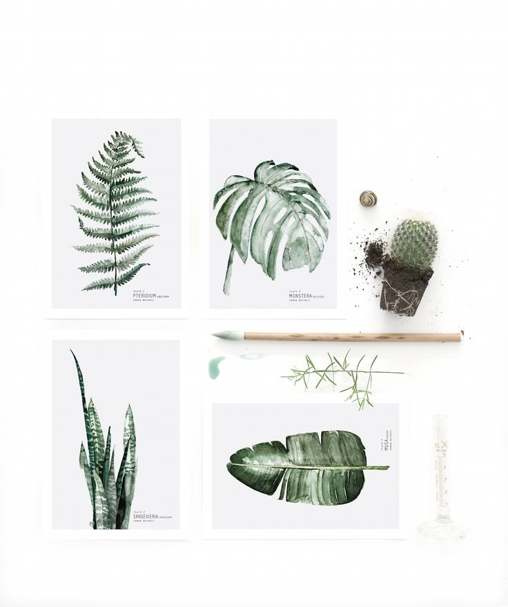 urban botanic | April and May