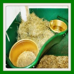 All In One Horse Feeding Station - Manufactured in the UK