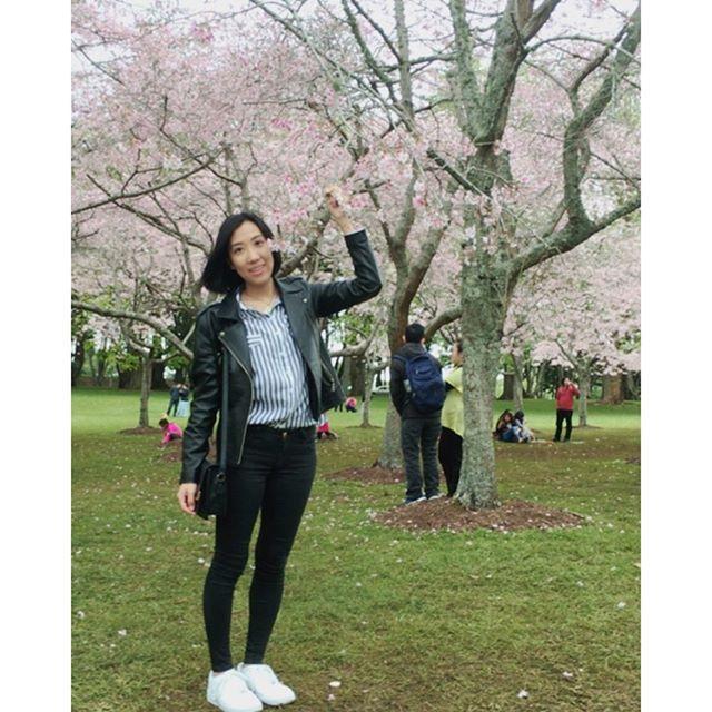 【miiisa88】さんのInstagramをピンしています。 《日本出発のときに桜見れなかったから、見れて嬉しかった🌸 桜ってなんかジーンとする。丘の上からの景色も最高!Cherry blossoms in NZ :) . . . . #桜 #お花見 #ニュージーランド #オークランド #ワンツリーヒル #日本人の心 #沁みる #ジーンときた #ほっこり #綺麗だね #꽃 #벚꽃 #아름다워 #예쁘다 #뉴질랜드 #오클랜드 #원트리힐 #cherryblossom #beautiful #loveit #newzealand #auckland #onetreehill》