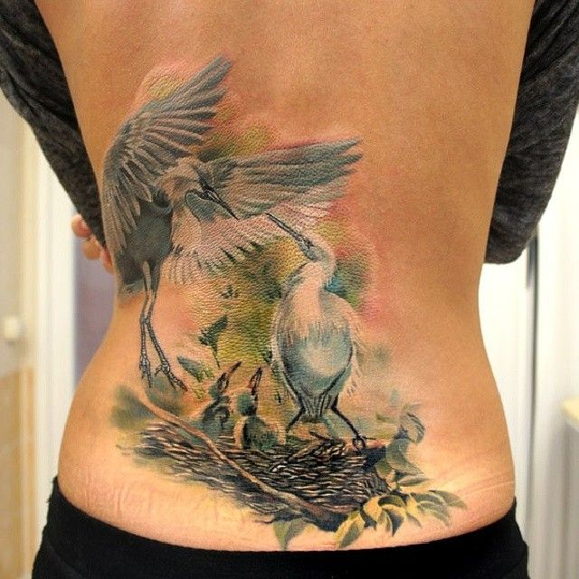 37 best images about stylish tattoos on pinterest for Realistic bird tattoo