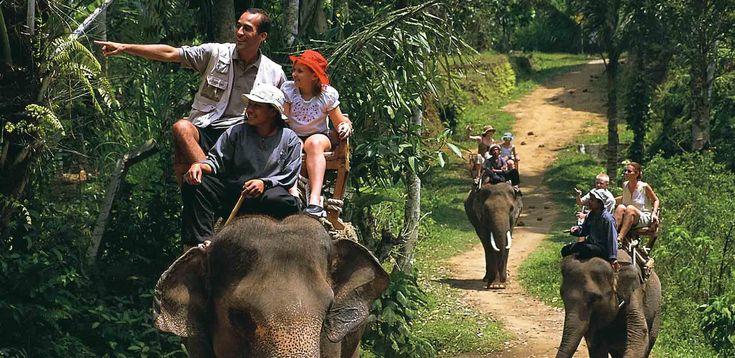 http://balilive.ru/excursions/safari-na-slonah-22.html