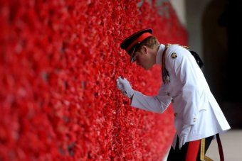 Prince Harry looks at poppies at Australia War Memorial
