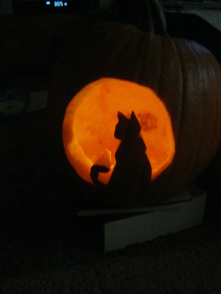 35 best halloween pumpkin carving ideas patterns images for Cat carved into pumpkin