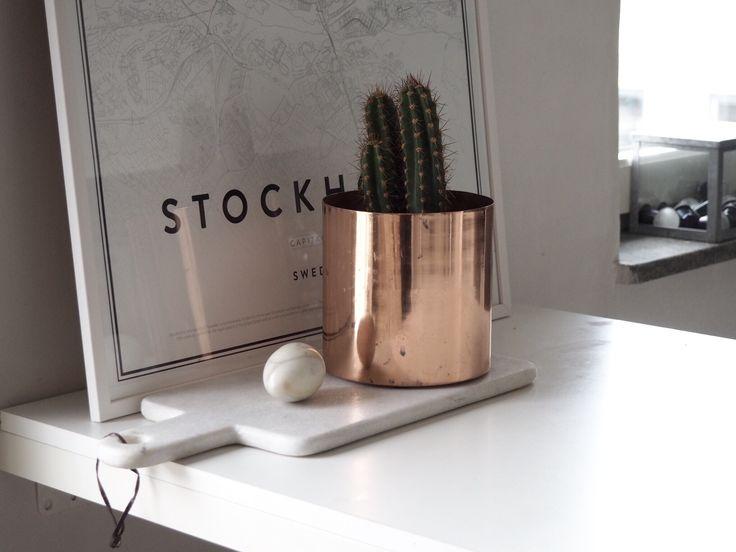 Copper pott marble table interior cactus