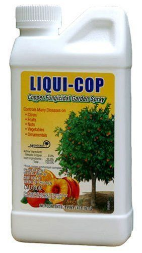 "Monterey Liqui-Cop All Natural Fungicide For Disease Prevention - Pint LG3100 by Monterey. $16.29. ""LIQUI-COP"" COPPER FUNGICIDAL GARDEN SPRAY. Dormant spray on fruit trees. Metallic copper 8.0%. Controls many diseases on: ornamentals, fruit trees, nut crops, and vegetables. Pint. ""LIQUI-COP"" COPPER FUNGICIDAL GARDEN SPRAY    Pint   Controls many diseases on: ornamentals, fruit trees, nut crops, and vegetables   Dormant spray on fruit trees   Metallic copper 8.0%   Bottle"