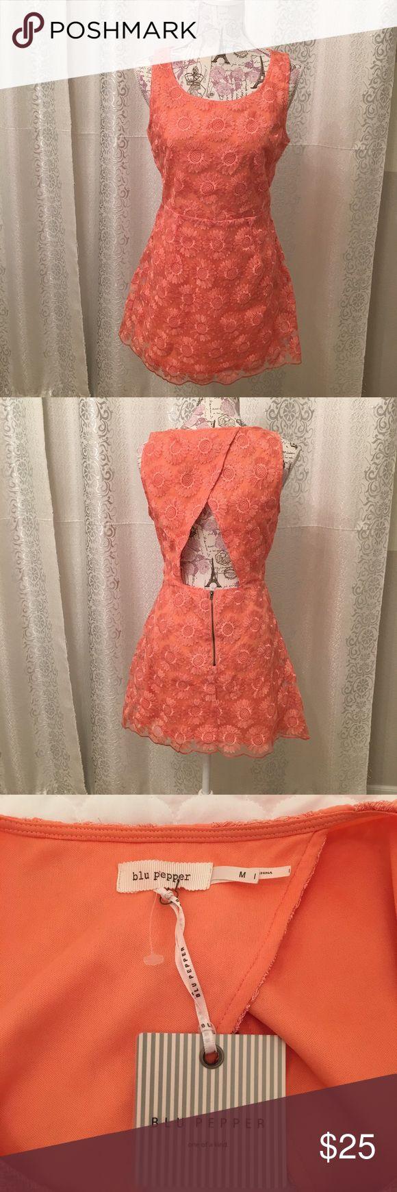 Brand new coral colored dress Brand new short dress. Blu Pepper Dresses Mini