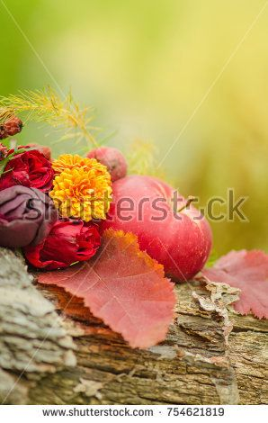 Autumn harvest seasonal fruits and vegetables on wooden background.