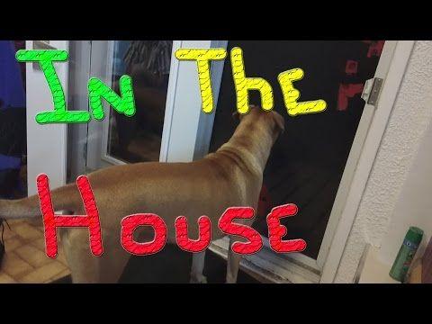24 Hours… #121 Ducks For The Homeless - YouTube
