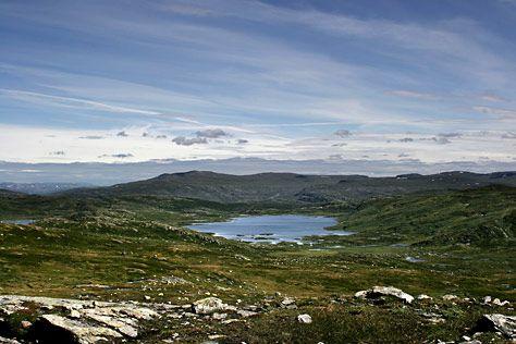 VIDDE | Geografi1b - Hardangervidda – viddelandskap