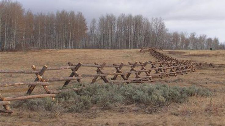 Best images about fencing ideas on pinterest forest