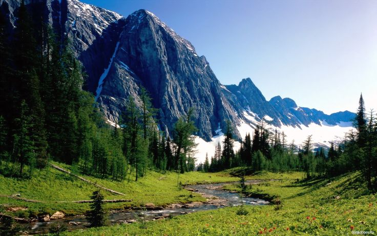 Летний  Летний горный поход имеет свои особенности: обилие дождей, наличие каменистых россыпей, густые заросли. Все это необходимо учитывать подбирая комплект снаряжения и одежды для путешествия по летним Карпатам.