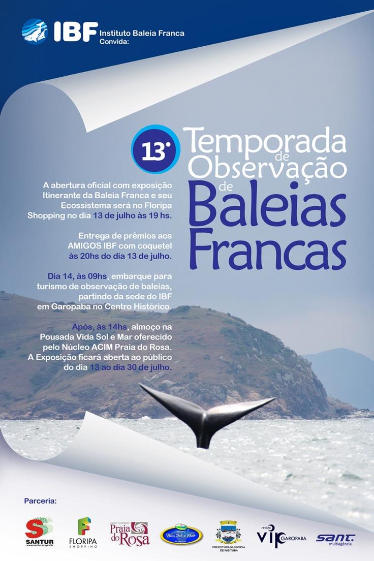Temporada de observação de Baleias Francas.