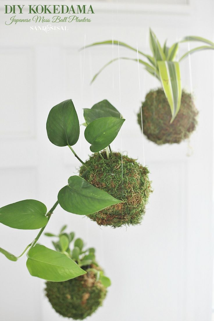 Top 30 stunning low budget diy garden pots and containers 187 home - Diy Kokedama Japanese Moss Ball Planters
