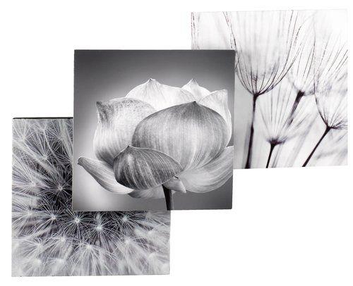 Obrázky THINKE 20x20 na stenu rôzne | JYSK 4EUR