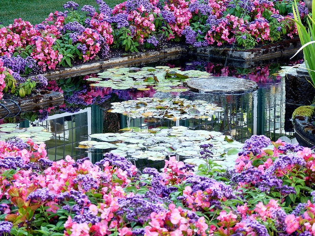17 best images about bouchard gardens on pinterest