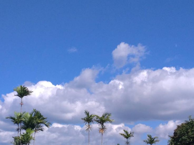 Melihat ke langit atas nampak cerah  ada yang tau dari di jogja bagian mana ini? #wonderfulljogja #explorejogja #wisatajogja #liburanjogja #jogja #yogyakarta #jogjaku #jogjaistimewa #lesprivatjogja #bimbeljogja