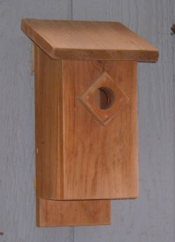 How To Build a Bluebird House: Bluebird Nest Box Plans