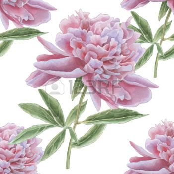 soft floral seamless patterns: Seamless pattern with gorgeous pink peony. Watercolor Hand drawn.