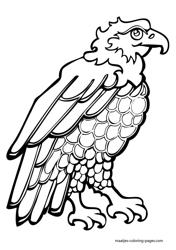 independence day coloring pages free independence day coloring book pages you can print and color