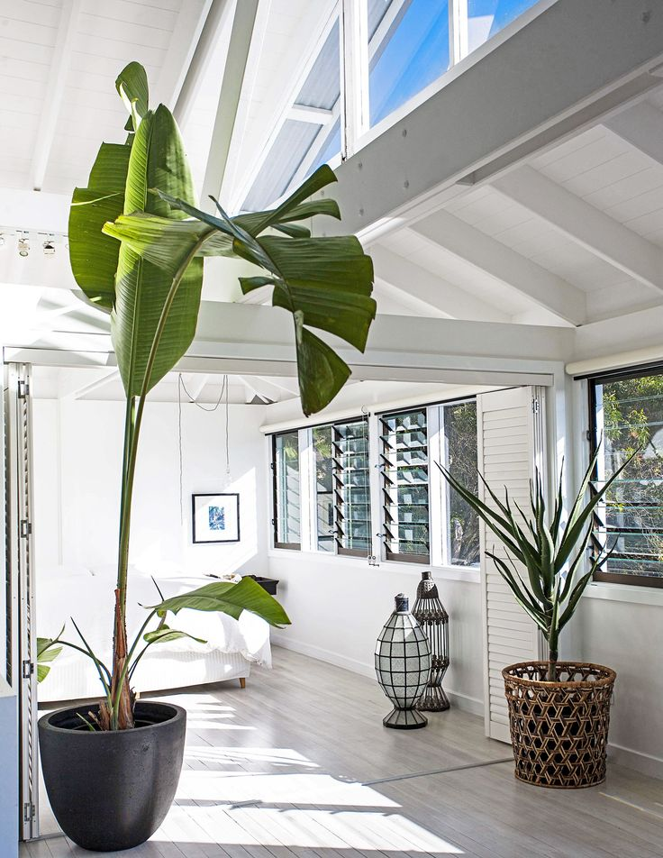 Glass louvres allow fresh sea breezes to flow into the master bedroom of this [renovated beach house](http://www.homestolove.com.au/gallery-jamies-beach-house-renovation-1408). Plants break up the all-white palette and add a fresh tropical feel. Photo: Nick Scott / real living