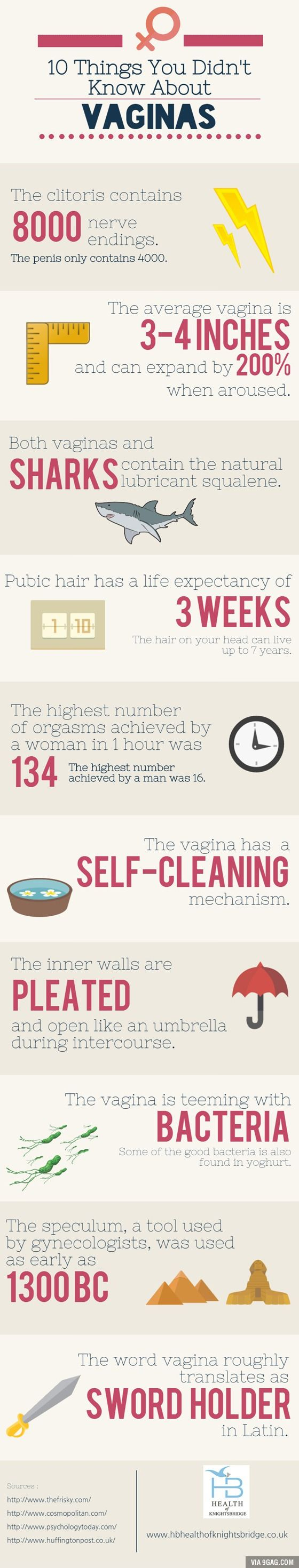 10 Things You Didn't Know About A Vagina